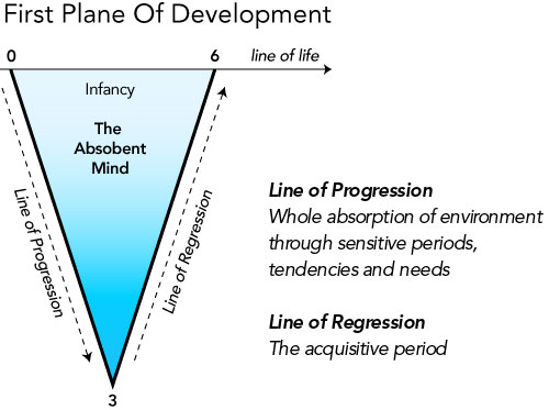 four planes of development age 6 to 12 by dr maria montessori essay