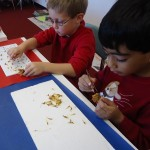 Inside the classroom - flower dissection