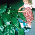 Life at school - taking care of plants